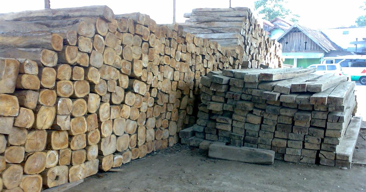 kayu jati untuk mebel jepara