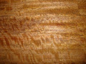 kayu mangga untuk furniture